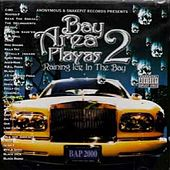 Bay Area Playas 2: Raining Ice In The Bay by Various Artists