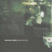 Seyahatname by Mercan Dede