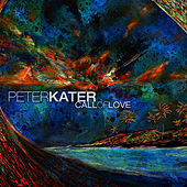 Call Of Love by Peter Kater