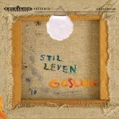 Stil Leven by Goslink