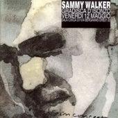 In Concert by Sammy Walker