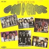 Exitos Gruperos - (Los galos - Los autenticos pasteles verdes - Los moros - Pomada- Grupo Miramar - Los bukis) by Various Artists