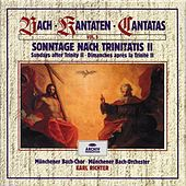 Bach, J.S.: Sundays after Trinity II (Vol. 5) by Various Artists