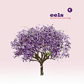 Tomorrow Morning by Eels