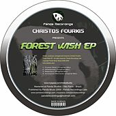 Forest Wish by Christos Fourkis