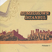 Homegrown İstanbul, Vol. 1 von Various Artists