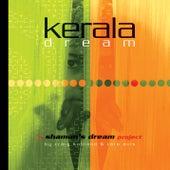 Kerala Dream by Shaman's Dream