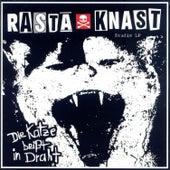 Die Katze beisst in Draht by Rasta Knast