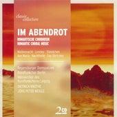Choral Music - Bortniansky, D. / Schubert, F. / Mendelssohn, Felix / Silcher, F. / Grieg, E. / Brahms, J. / Abt, F.W. / Bruch, M. by Various Artists