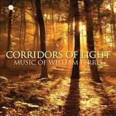 Ferris: Corridors of Light by Various Artists