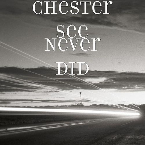 Never Did by Chester See