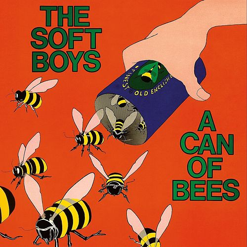 A Can Of Bees by The Soft Boys