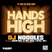 Hands High by DJ Noodles