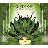 Efflorescence [CD Rec 003](Chill-out / Psy-dub / Downtempo) by Androcell