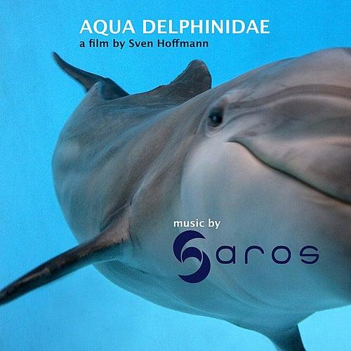 Aqua Delphinidae by Saros