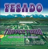 Trayectoria by Pesado