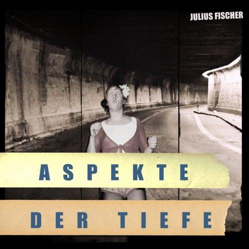 Aspekte der Tiefe by Various Artists