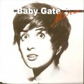 Baby Gate by Mina