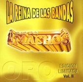 La reina de las bandas Vol. II by Banda Machos