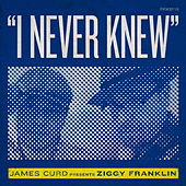 I Never Knew by Ziggy Franklin