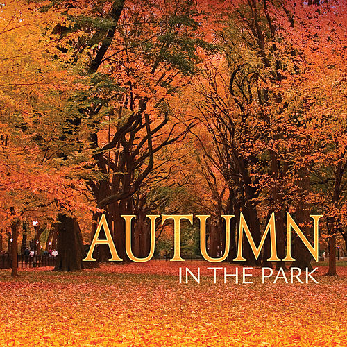 Autumn In The Park by Various Artists