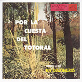 Por La Cuesta Del Totoral by Los Chalchaleros