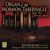 Organ Recital: Elliott, Richard - Bach, J.S. / Elgar, E. / Karg-Elert, S. / Schreiner, A. / Durufle, M. / Wood, D. (Organ of the Mormon Tabernacle) by Various Artists