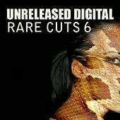 Rare Cuts 6 - Chronicles by Various Artists