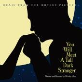 You Will Meet A Tall Dark Stranger by Various Artists