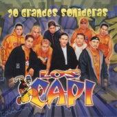 20 Grandes Sonideras by Los Capi