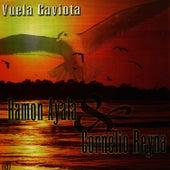 Vuela Gaviota by Ramon Ayala