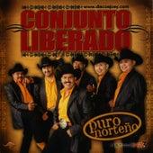 Puro Norteño by Conjunto Liberado