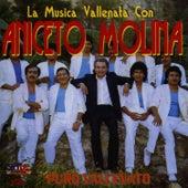 Puro Vallenato by Aniceto Molina