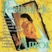 Festival de amor by Various Artists