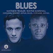 Gershwin, G.: Porgy and Bess Suite / 3 Preludes / Antheil, G.: Violin Sonata No. 2 / Copland, A.: 2 Pieces (Trusler, Marshall) (Blues) by Various Artists
