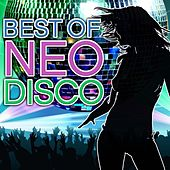 Best Of Neo Disco by Count Dee's Silver Disco Explosion
