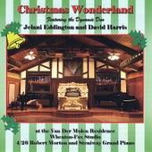 Christmas Wonderland by Jelani Eddington