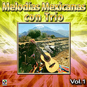 Melodias Mexicanas Con Trio Vol. 1 by Various Artists