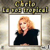 La Voz Tropical Vol. 1 by Chelo