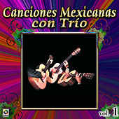 Canciones Mexicanas Con Trio Vol. 1 by Various Artists