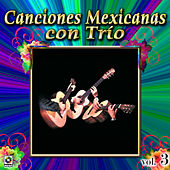 Canciones Mexicanas Con Trio Vol. 3 by Various Artists