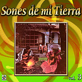 Sones De Mi Tierra Vol. 3 by Various Artists