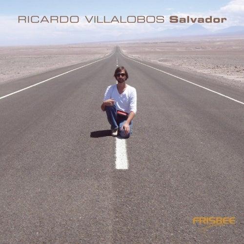 Ricardo Villalobos Salvador CD-Album by Various Artists