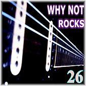 Rocks, Vol. 26 by Why Not