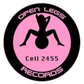 Cell 2455 by Kenji Nakagami
