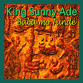 Baba Mo Tunde by King Sunny Ade