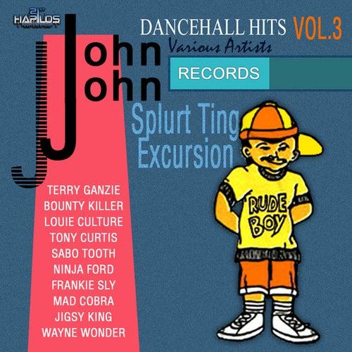John John Dancehall Hits Vol.3 by Various Artists