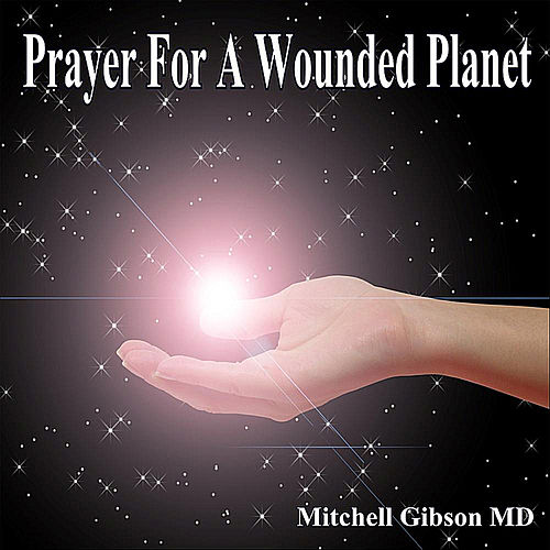 Prayer for a Wounded Planet by Mitchell  Gibson MD