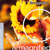 Be Magnified by David Scott