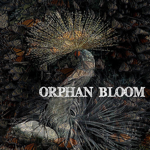Orphan Bloom by Orphan Bloom